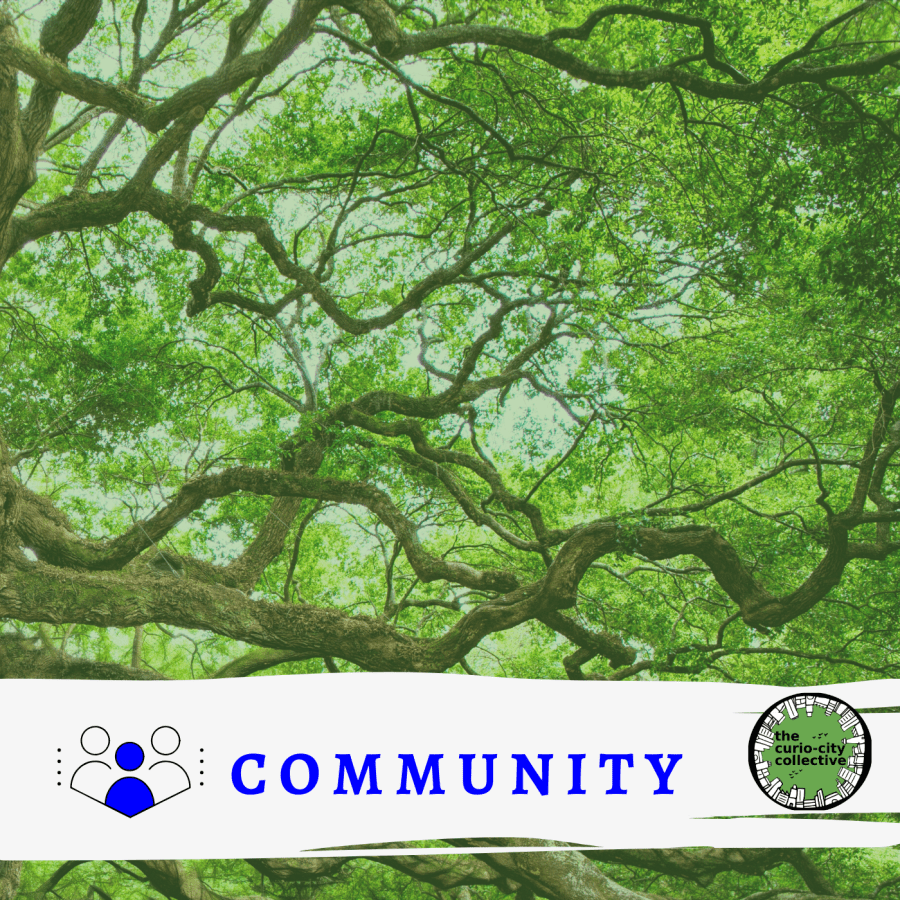 A canopy of trees with the word community on top
