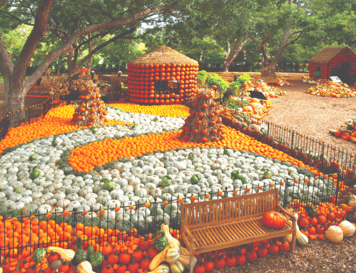 A house and a sidewalk made from colorful orange and white pumpkins