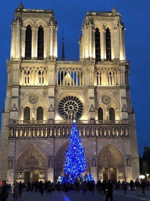 Notre Dame Christmas Tree