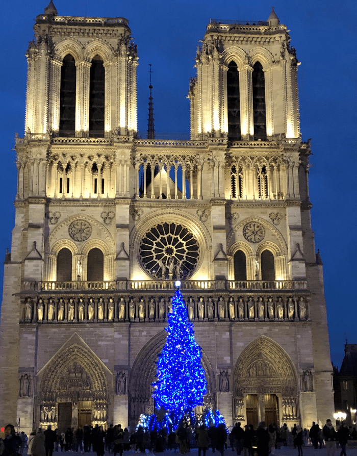Christmas Tree with Blue lights in front of Notre Dame Cathedral at night