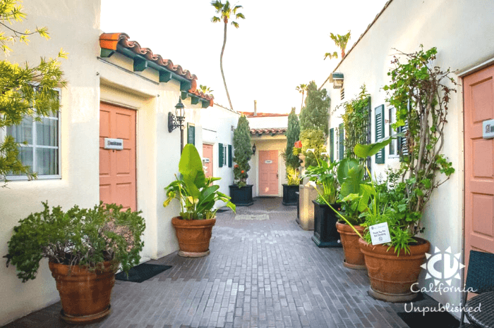 Peach Colored Hotel doors with green plants