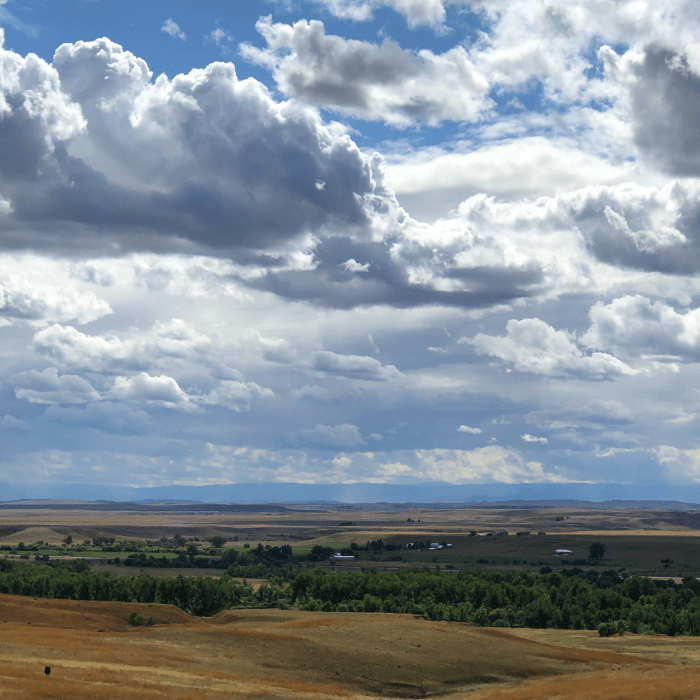 Green fields with blue sky filled with clouds in Southeast Montana