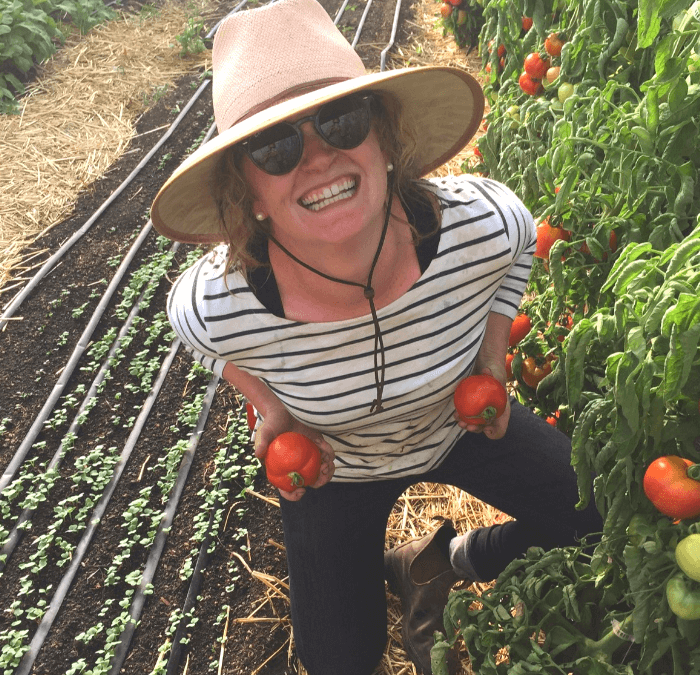 Kate Olen:  Your Urban Garden Expert!