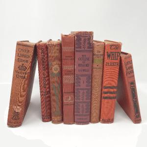 Red Vintage Books
