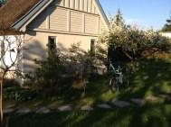 gardener-denmark-garden-Maintenance-2