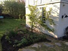 the-curious-gardener-denmark-garden-herbs
