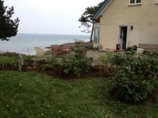 the-curious-gardener-denmark-garden-view-acidic-plants