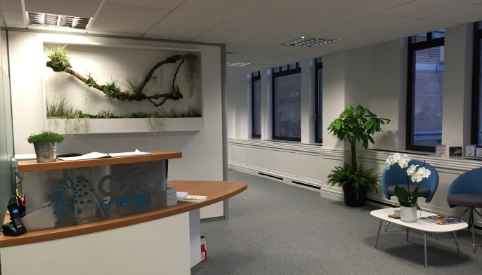 A Office plants in london