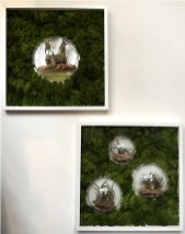 bubble-wall-frames-living-decoration-terrerium-plants-moss-living-wall-office-houseplants-curious-gardener1