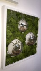 bubble-wall-framesclose-living-decoration-terrerium-plants-moss-living-wall-office-houseplants-curious-gardener1