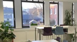 terrariums-london-greenwall-plant-office-houseplants-curious-gardener-close-13