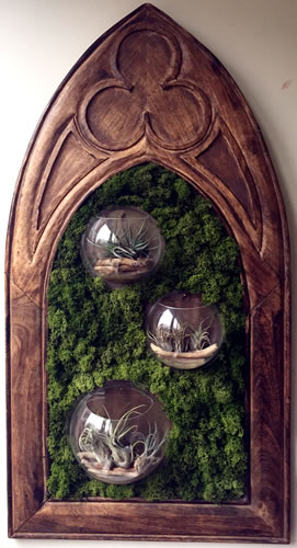 terrariums-london-picture frame-plant-home-houseplants-curious-gardener-gothic-victorian-steampunk