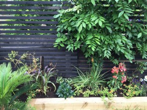 garden design crouch end london (11)