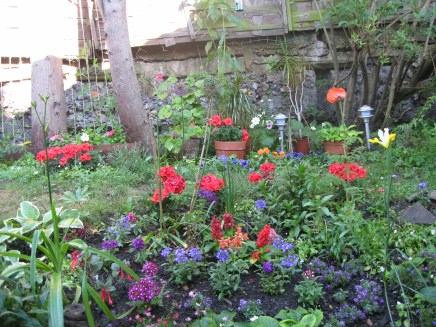 gardening in finsbury park london (2)