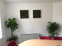 office plants in london - ost