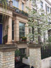 Garden design and maintenance in Ladbrook Grove, London