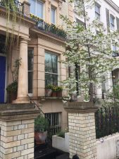 Garden design and maintenance in Ladbrook Grove, London