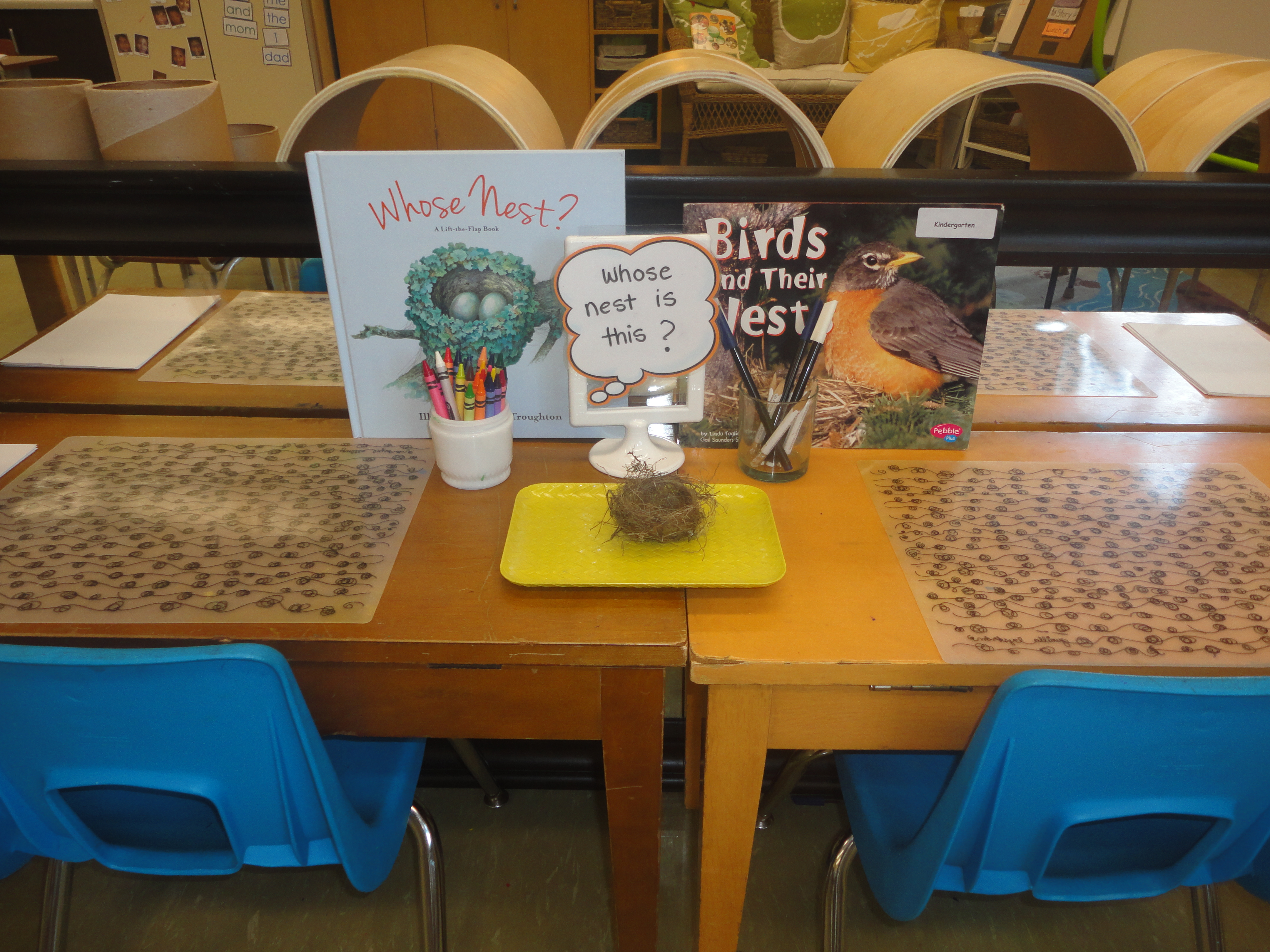 Science Provocation