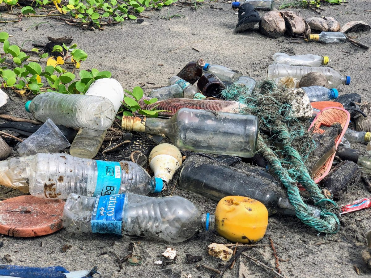 beach litter