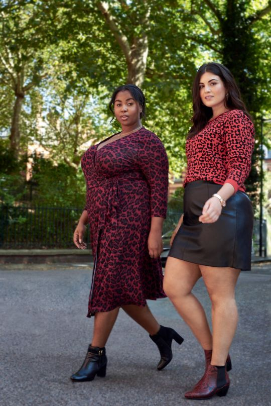 Oasis Plus Size Collection