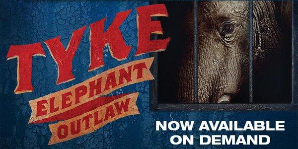 Tyke:  Elephant Outlaw