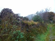 Bordingstown, with the trail path running alongside
