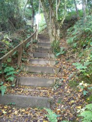 Even more steps...