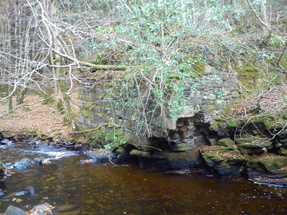Old bridge buttresses