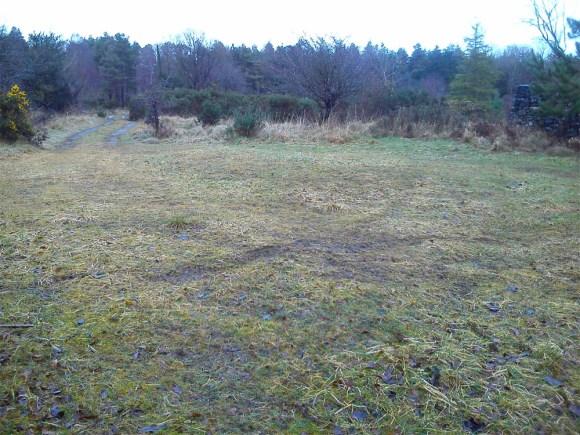 Bonaveen sawdust mound