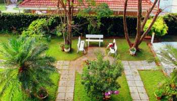 Small Yard Landscaping Ideas | The Cutting Edge Landscape