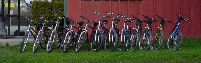 Adult Bike panoramic