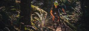 Mountain Biker - The Cycling Co