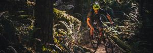 Mountain Biker - The Cycling Co