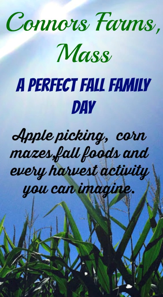 Everything you dream of about doing on a perfect fall family day in one place at Connor Farms, Massachusetts www.thedailyadventuresofme.com