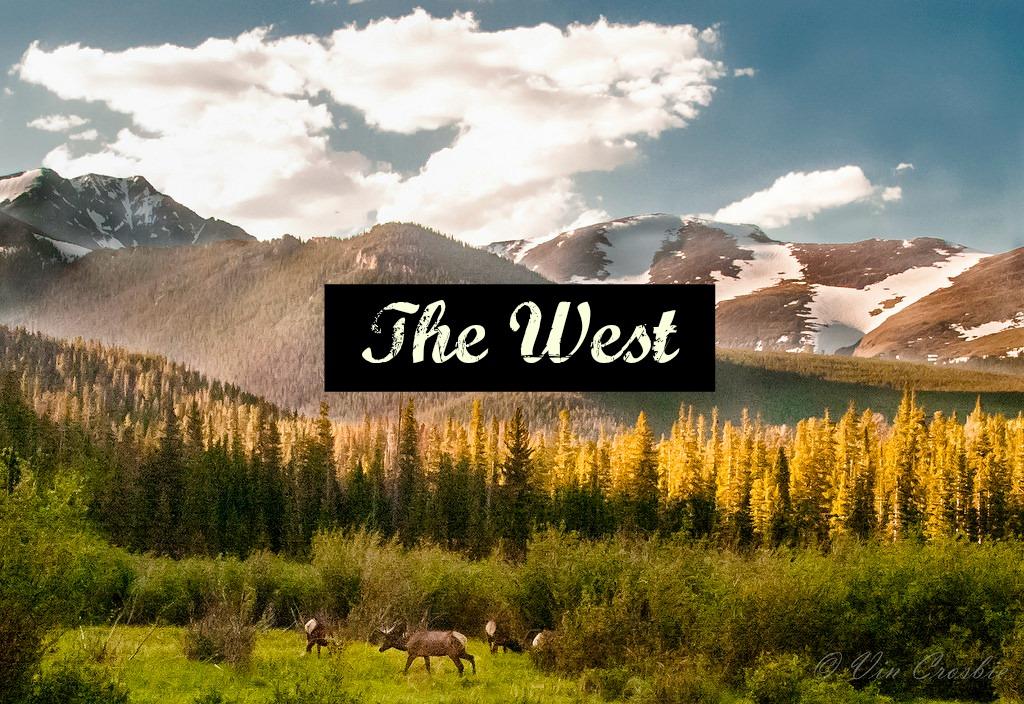 Ultimate US Road Trip Guide www.thedailyadventuresofme.com