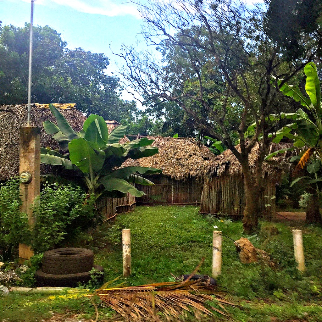 A Mayan village in the Yucatan, Mexico. www.thedailyadventuresofme.com