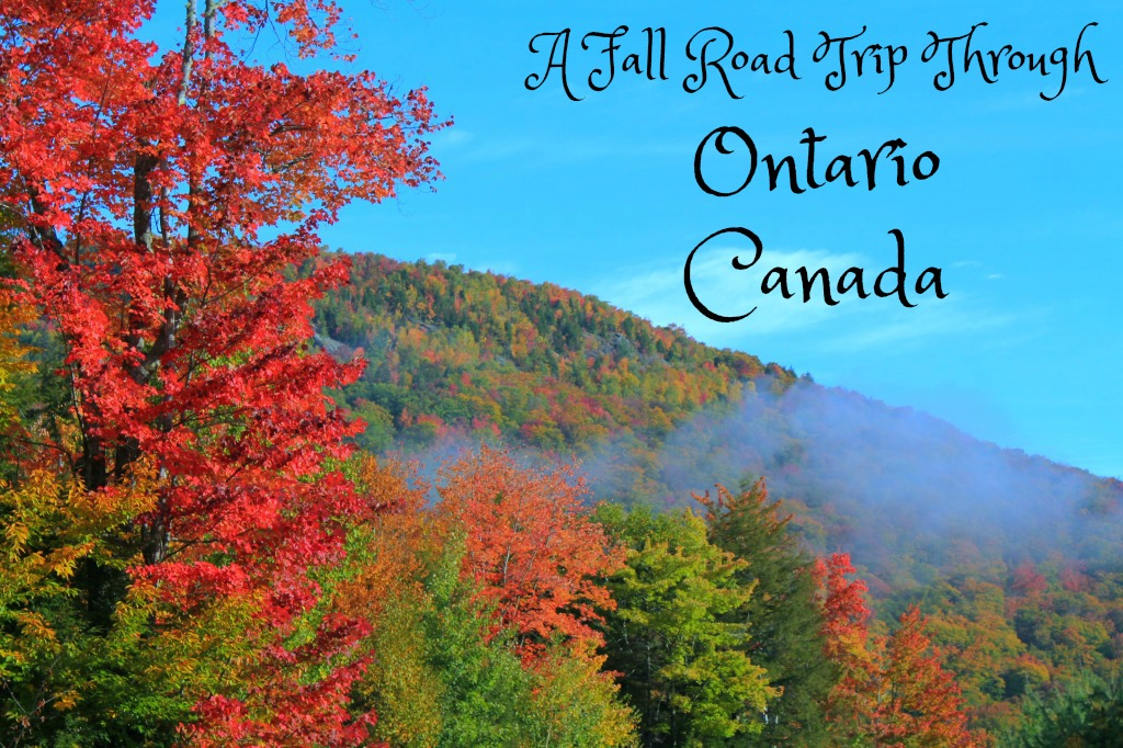 Fall Road Trip Through Ontario Canada