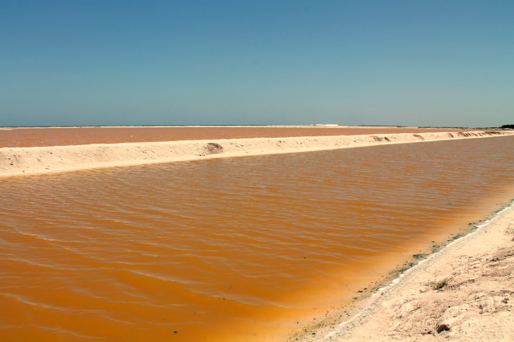Las Coloradas, Mexico as seen from Ria Lagartos, Mexico. www.thedailyadventuresofme.com