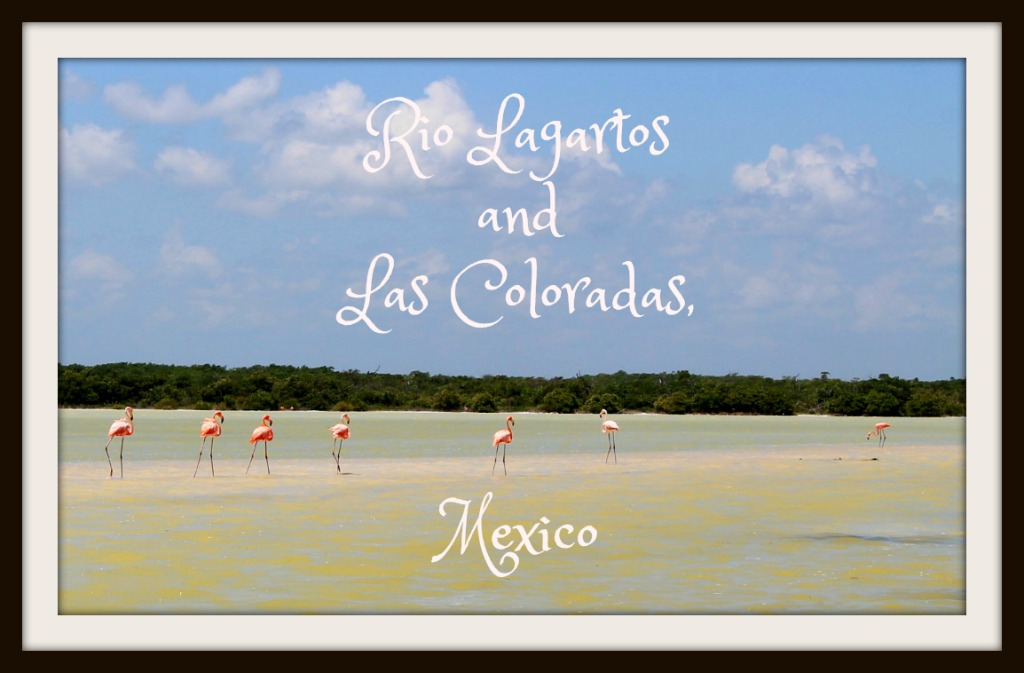 Rio Lagartos and Las Coloradas, Mexico- an Alligator River and a Pink Lake?