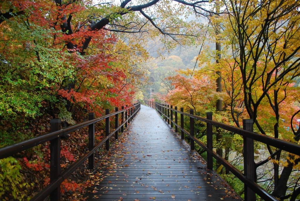 the best fall destinations