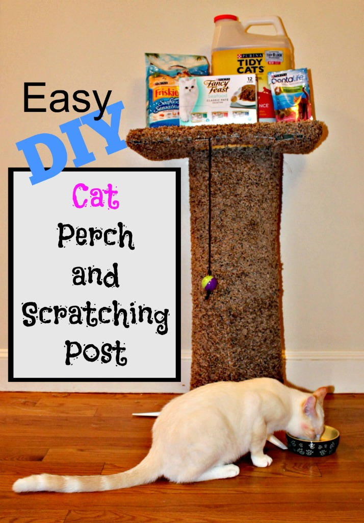 Easy DIY Cat Perch with Scratching Post