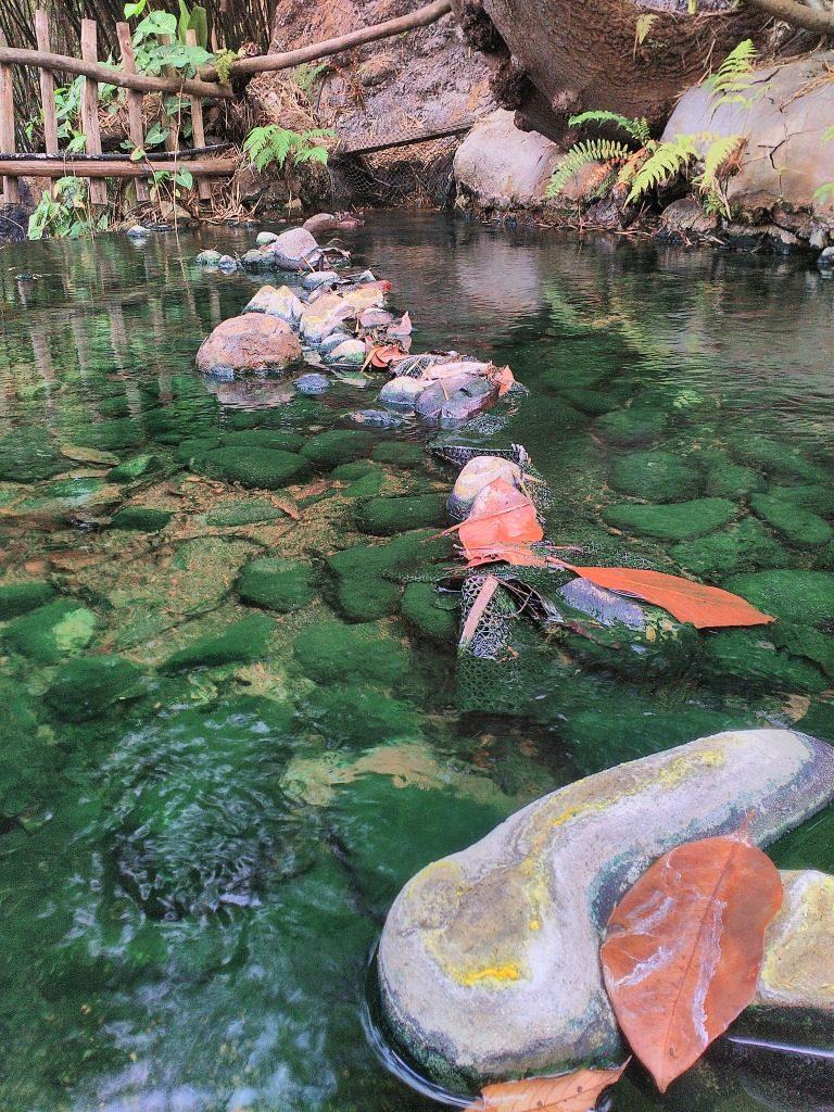 Travel to Bandung Indonesia www.thedailyadventuresofme.com