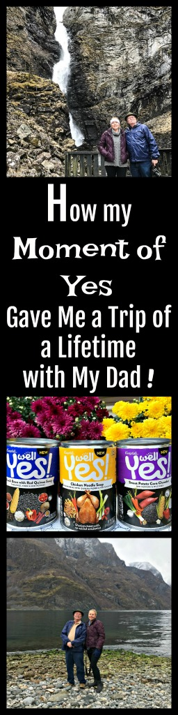 Although there were many obstacles in the way, because I embraced a Moment of Yes and had the trip of a lifetime with my dad. #ad #WellYesMoment
