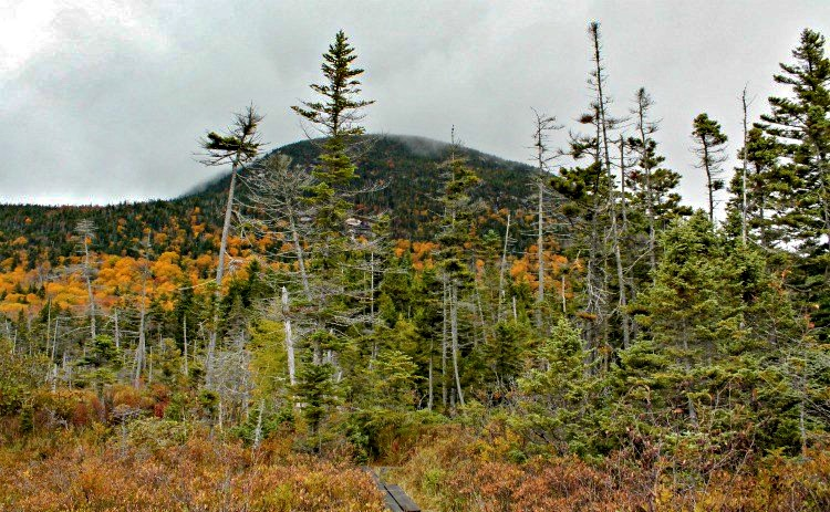 best easy hikes in New England
