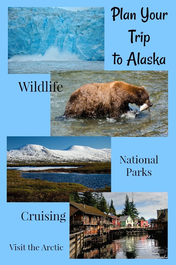 Read on for help planning your perfect trip to Alaska! #thingstodoinAlaska #Alaskatripplanner #TBIN