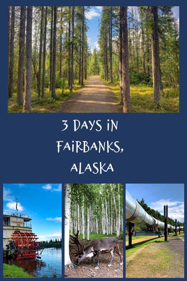 A visit to Fairbanks can be the perfect introduction to Alaska. In Fairbanks, you can learn all about what makes Alaska special. Read on for fun things to do in Fairbanks, including gold mining, riverboats, the Alaskan pipeline and learning about native people. #Alaska #thingstodoinAlaska #TBIN #themidlifeperspective