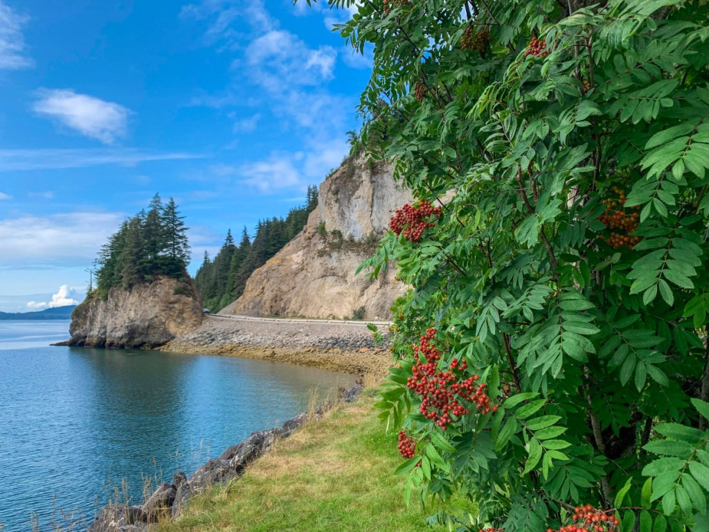 icy strait point excursions