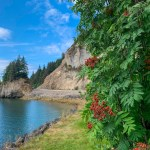How to Spend Your Day in Icy Strait Point, Alaska as a Cruise Port