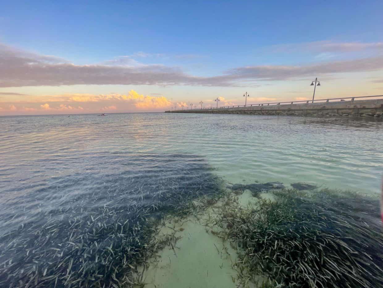 Miami to Key West Road Trip: A One Week Florida Keys Itinerary
