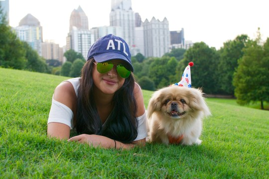 Happy Birthday Teddy the Pekingese!